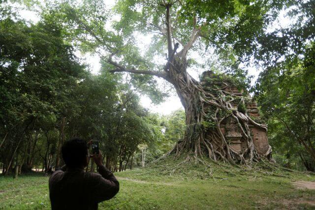 Sambor Prei Kuk, une cité plus ancienne qu'Angkor dévoile près de 300 temples engloutis sous les racines