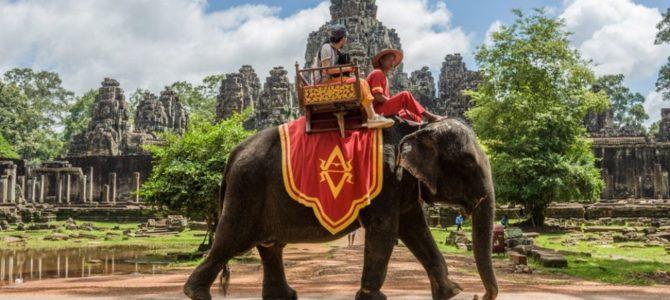 Les visites à dos d'éléphant vont enfin être bannies à Angkor